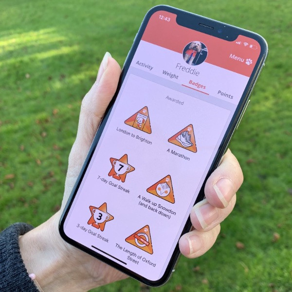 Pitpat app on a mobile phone showing badges earnt
