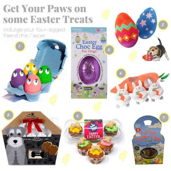 Easter dog treats and toys