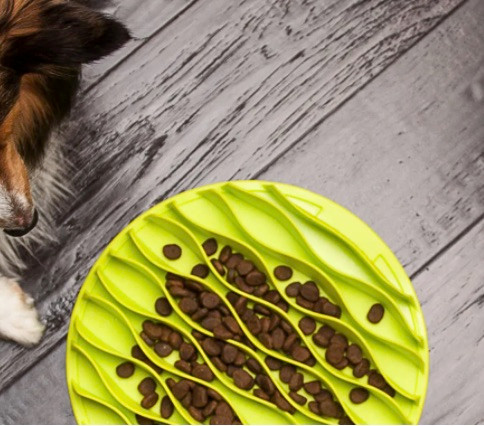 outward hound slow feeding mat for dogs in green