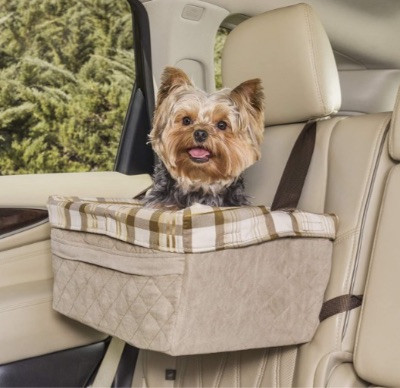 a puppy in a car booster seat on the rear seat of a car