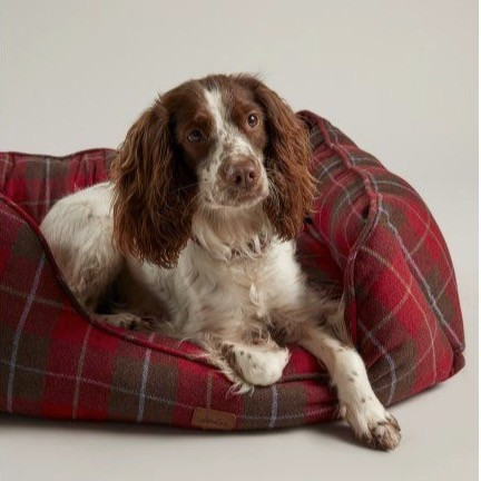 Joules red tartan dog bed with a spaniel