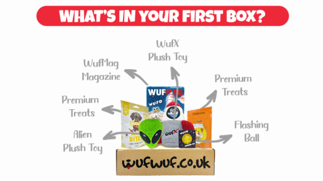 Contents of the WufWuf dog subscription box