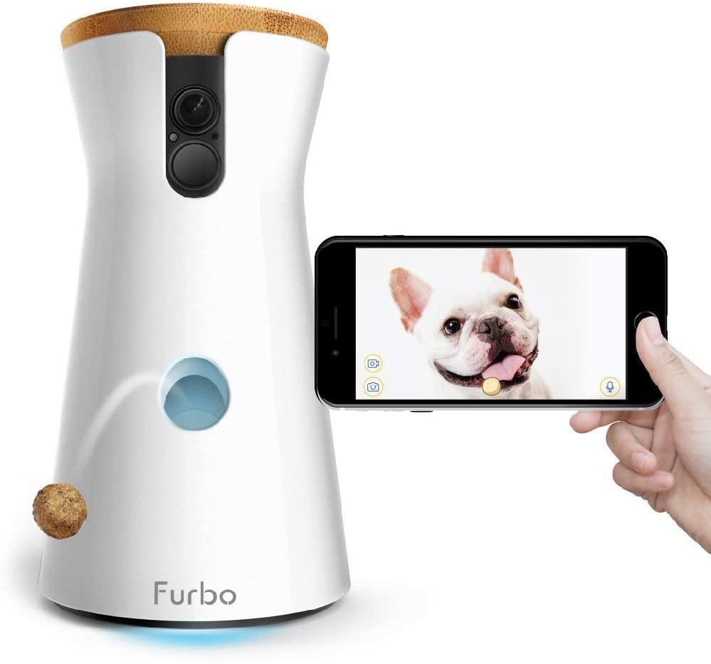 Furbo Dog Camera with a dog treat