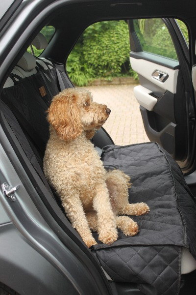 cockapoo on car seat cover in rear of range rover velar