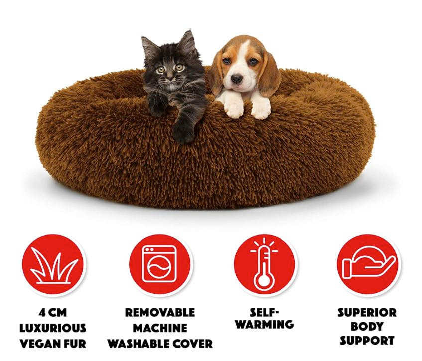 a puppy and kitten sitting on a donut nesting dog bed