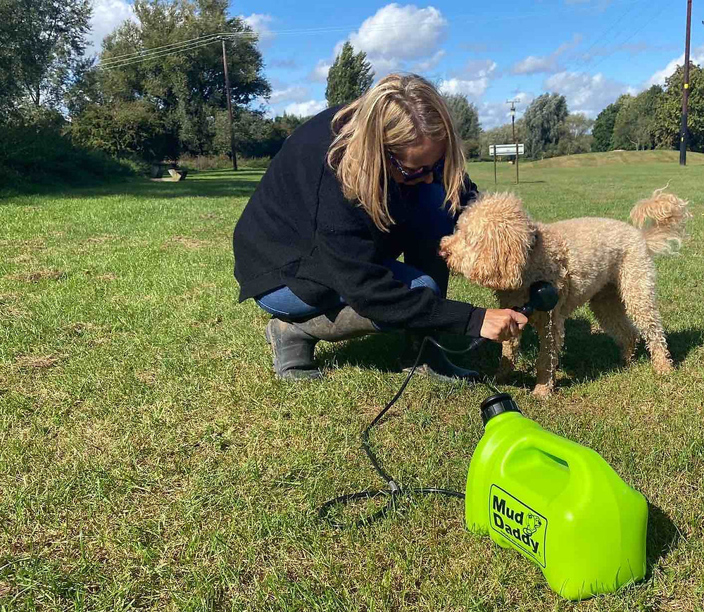 washing a dog with the mud daddy 5l dog shower