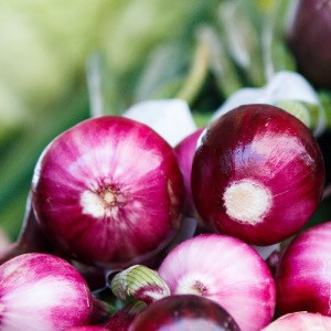 a bunch of toxic red onions