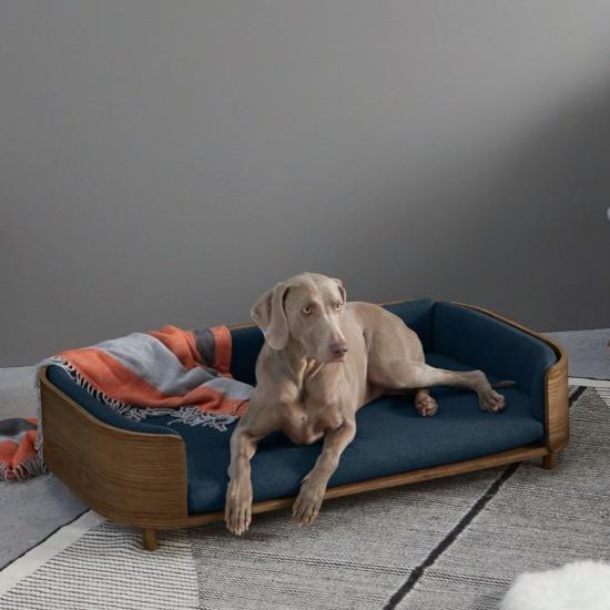 dog laying on a made.com dog sofa