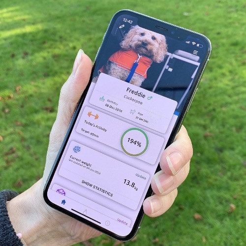 Phone displaying the PoochPlay App