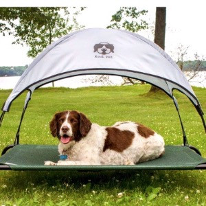 Dog on an elevated cooling bed with a canopy