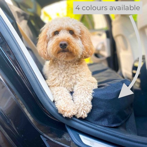 Cockapoo dog on a Kurgo rear car seat cover showing the side seat protection