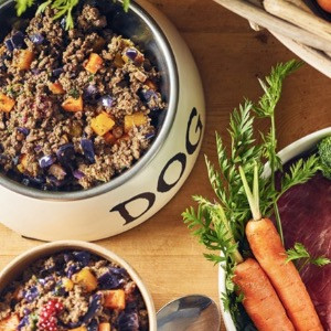 Different Dog fresh dog food in bowls with raw ingredients