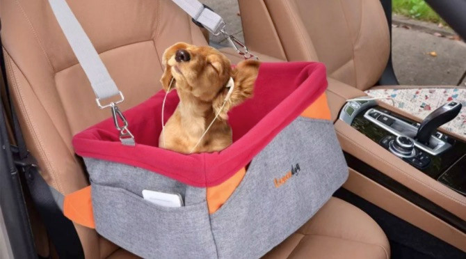Dog in Legendog car seat wearing headphones