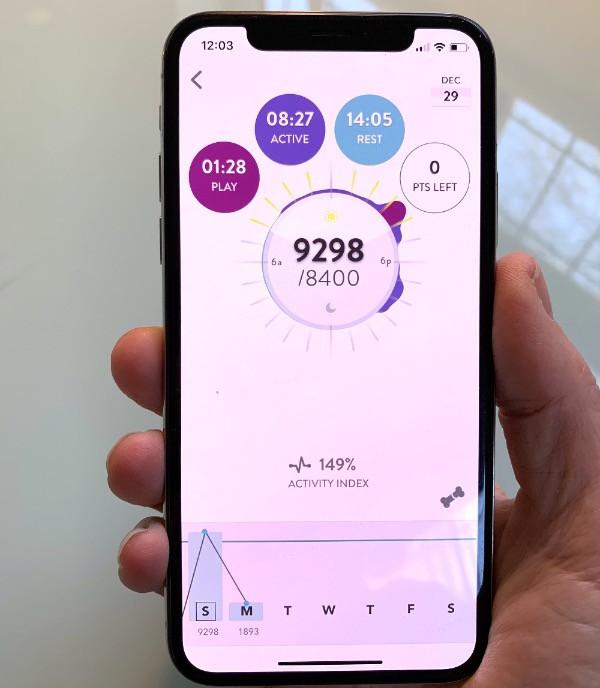 Fitbark activity tracker app screen on mobile