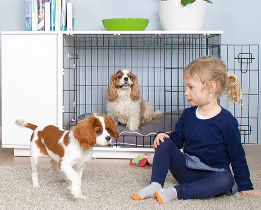 Omlet Studio dog crate furniture with two puppies and a young girl.
