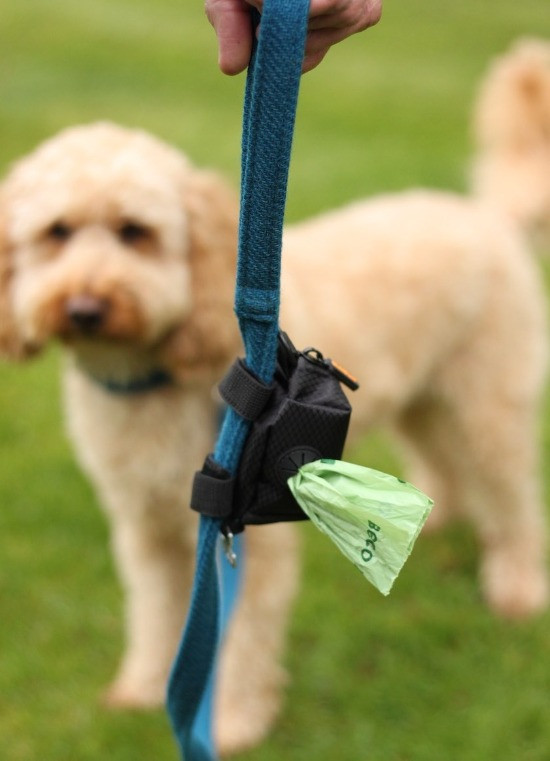 A dog lead with a MalsiPree fabric dog poo bag holder attached with two velcro straps