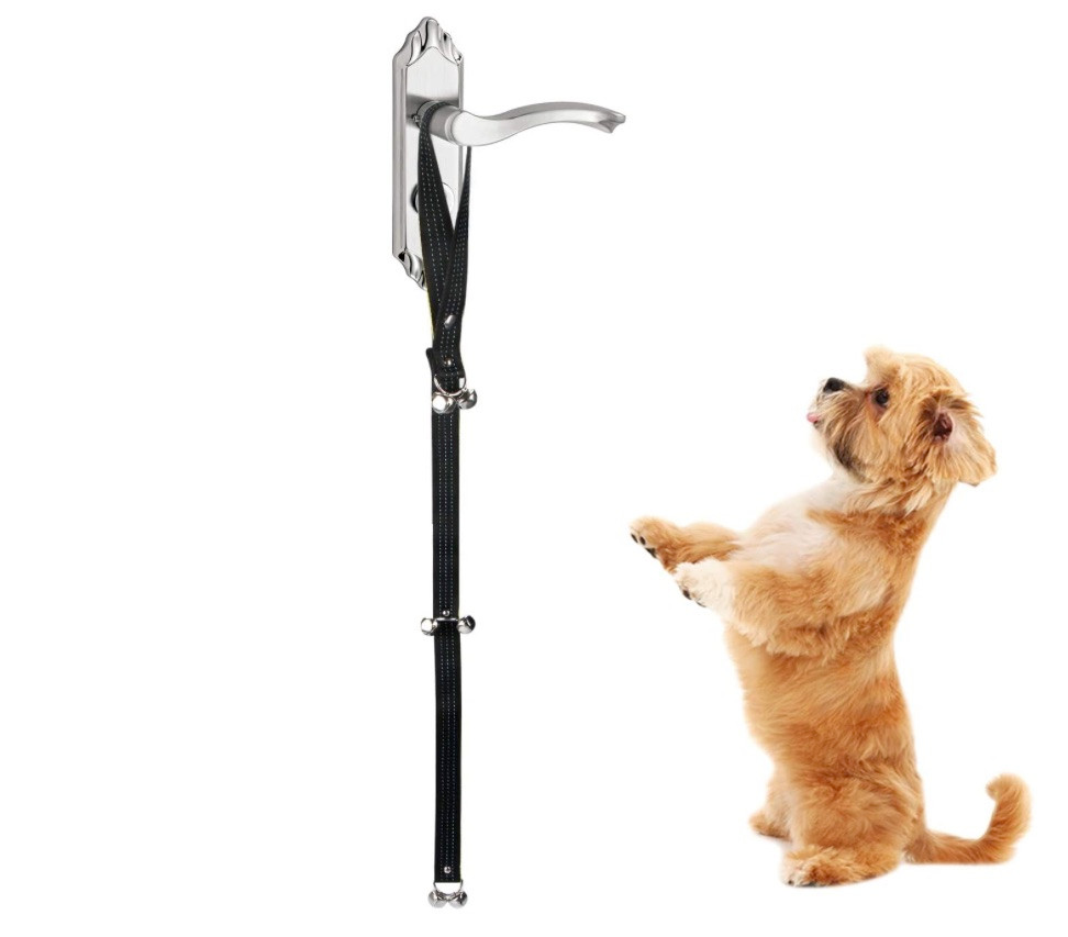 Dog door bells to help toilet train a puppy