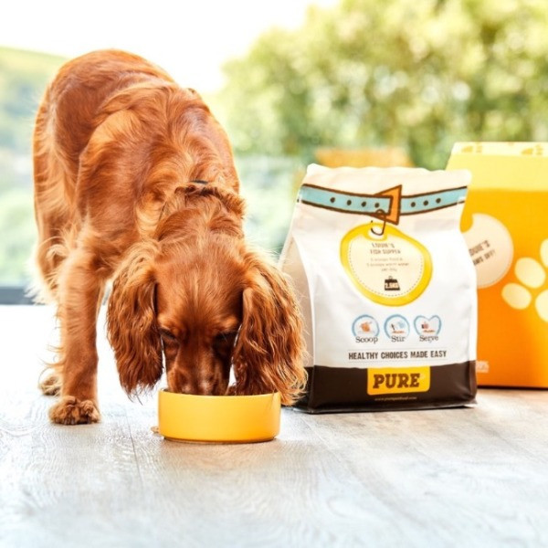 A dog eating Pure dog food in a bowl with packaging