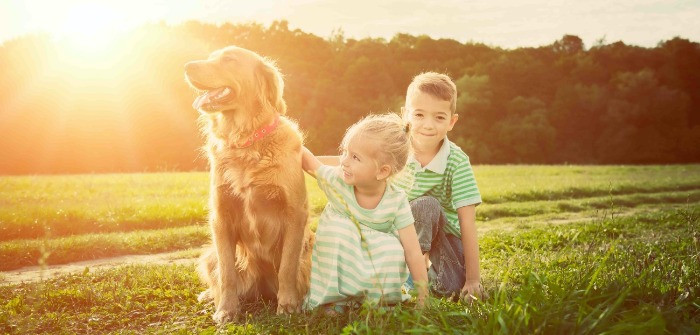 Dog wearing activity tracker with children in a field