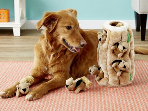 Top 10 Puzzle Toys for Dogs