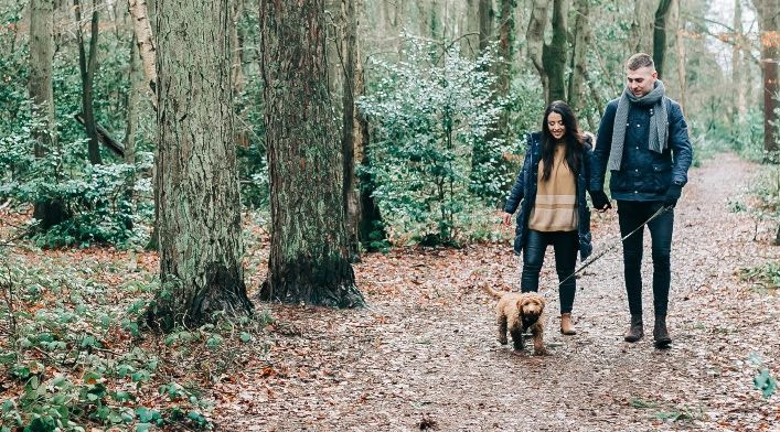 Couple walking in the woods with a cockapoo dog
