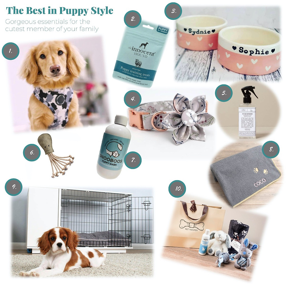 Essential products for new puppys