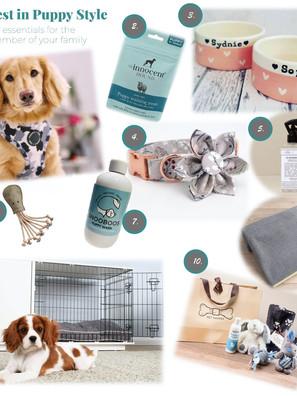 New Puppy Essentials : Stunning Puppy Style