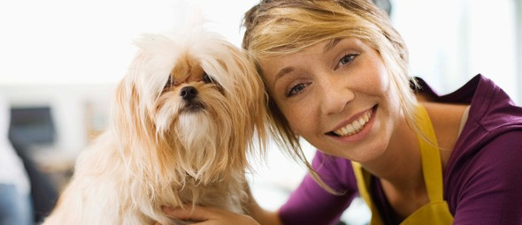 selection of best dog grooming shampoos