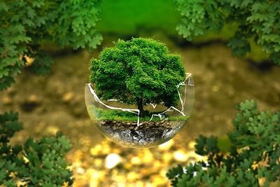 Naturschutz.png