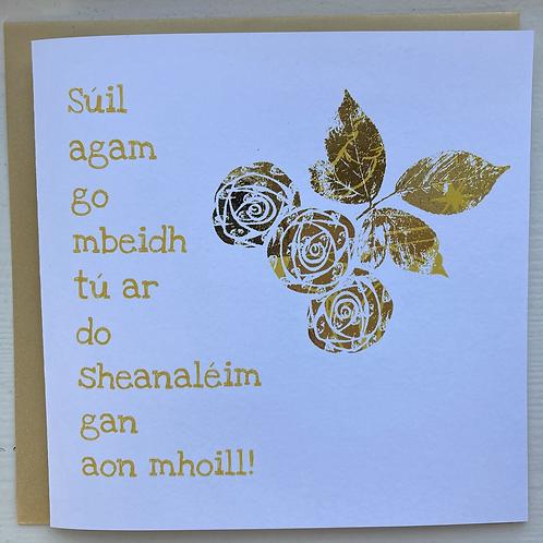 Siúl agam go mbeidh tú ar do sheanaléim gan aon mhoill: Get well soon (Munster)