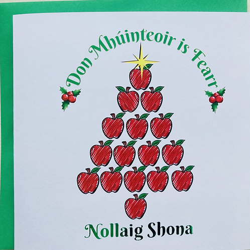 Don Mhúinteoir is Fearr - Nollaig Shona