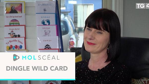 MolSceal-DingleWildCard.jpg