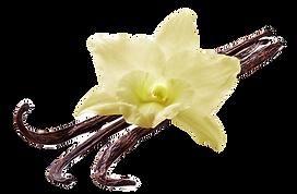 Vanilla-custard-Sign_edited.png