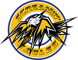 screaming eagles-outline.png