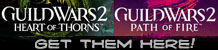 Get GW2 expansions here!