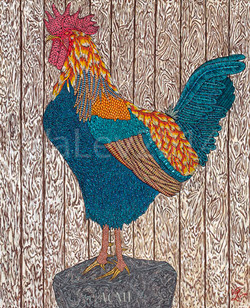 Acme Rooster