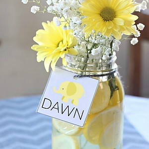 Welcoming Baby  DAWN
