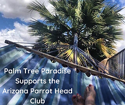Palm Tree Paradise.png