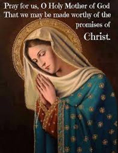 Mary pray for us.jpg