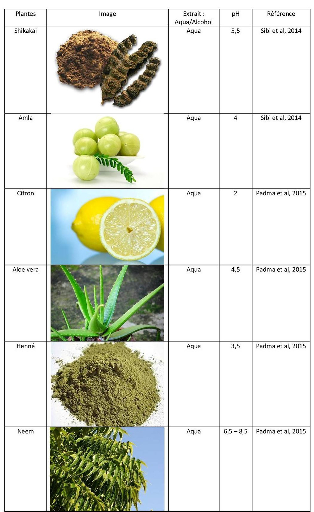 plante ayurvedique antipelliculaire
