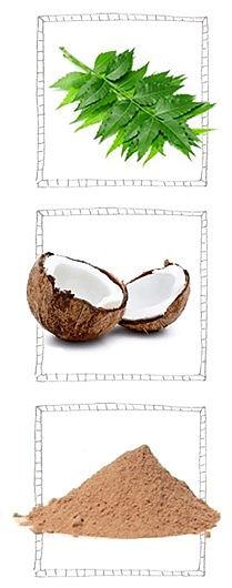 ingredient ayurvedique.jpg