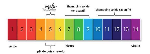 shampoing pH 5 melo ayurveda.jpg