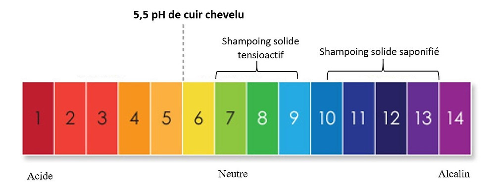 pH neutre shampoing solide melo ayurveda