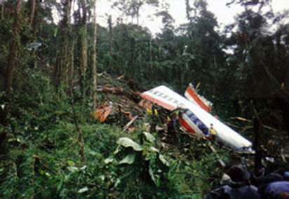 American_Airlines_Flight_965_crashsite W