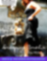 Dressing Amelia Poster FLS.jpg