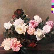 NEW ORDER - Power, Corruption, & Lies