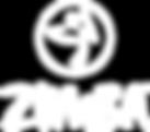 logo zumba.png