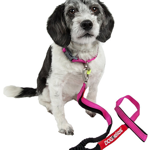 Neo-Indestructible Easy-Tension Embroidered Thick Durable Pet Leash & Collar