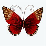 redandbrowntonesbutterfly%20(1)_edited.j