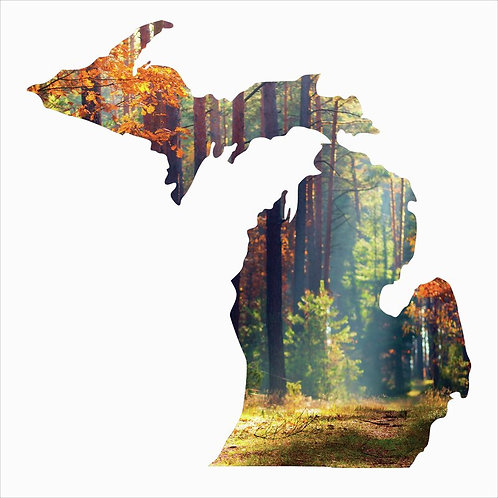 Michigan Silhouette Metal Laser Cut Wall Décor